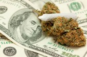 Post Legalization Colorado