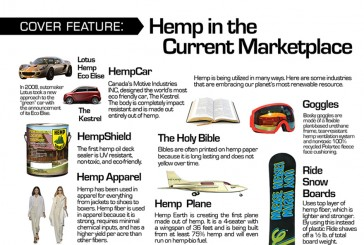 Feature: Hemp in the Current Marketplace
