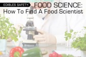 Food Science: How To Find A Food Scientist