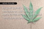 "RECENT SURVEY SHOWS: MARIJUANA USE DECLINED AMONG TEENS THIS YEAR WHILE ""MARIJUANA SAVES LIVES"""