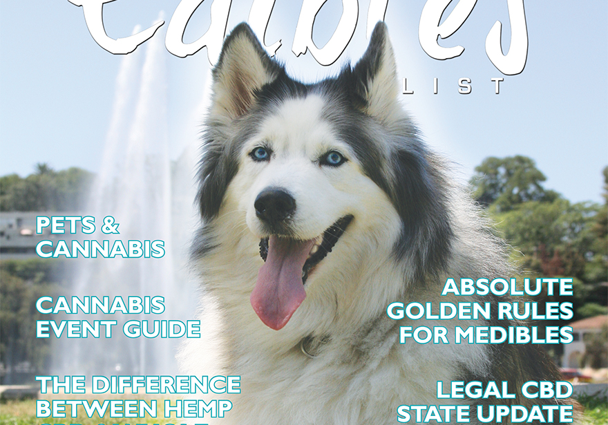 Cover Feature: Pets & Cannabis