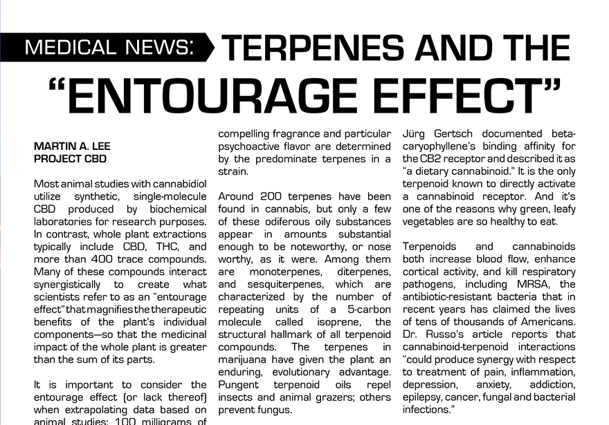 "SCIENCE: TERPENES AND THE ""ENTOURAGE"" EFFECT 