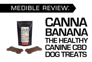 MEDIBLE REVIEW: CANNA BANANA THE HEALTHY CANINE CBD DOG TREATS