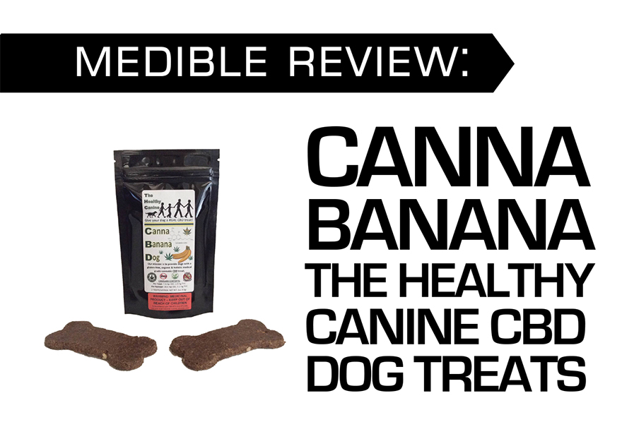 CANNA BANANA THE HEALTHY CANINE CBD DOG TREATS