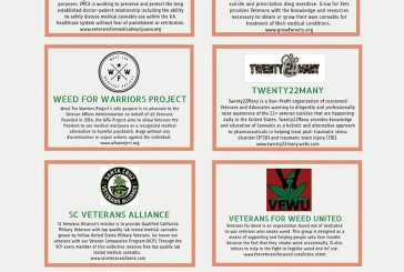 VETERAN ORGANIZATIONS THAT SUPPORT CANNABIS