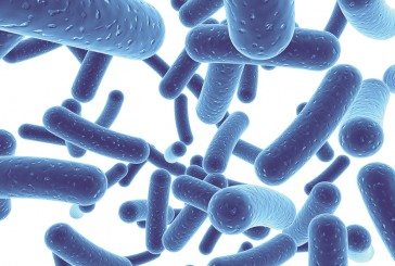 PROBIOTICS: Going With Your Gut-Incorporating Probiotics Into Your Shelf Stable Food Products
