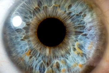 MEDICAL CORNER: CANNABIS & GLAUCOMA