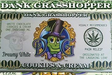 DANK GRASSHOPPER MILKY DREAM 1000MG CHOCOLATE BAR REVIEW