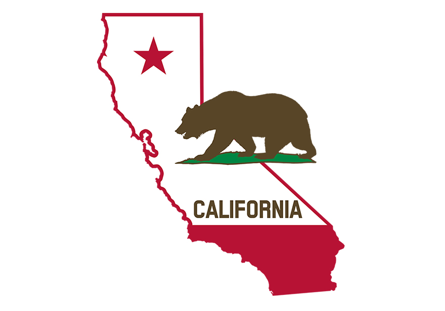 California Will Likely See Recreational Weed on November Ballot: What AUMA means for CA Cannabis