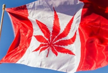 2017 CANADA MAY BECOME THE FIRST LEGALIZED RECREATIONAL POT NORTH AMERICAN COUNTRY