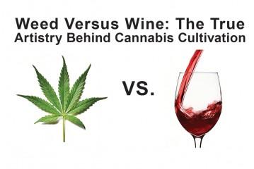 Weed Versus Wine: The True  Artistry Behind Cannabis Cultivation