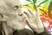 Dancer, Musician, and Spiritual Cannabis Guru: Here is Tommy Chong