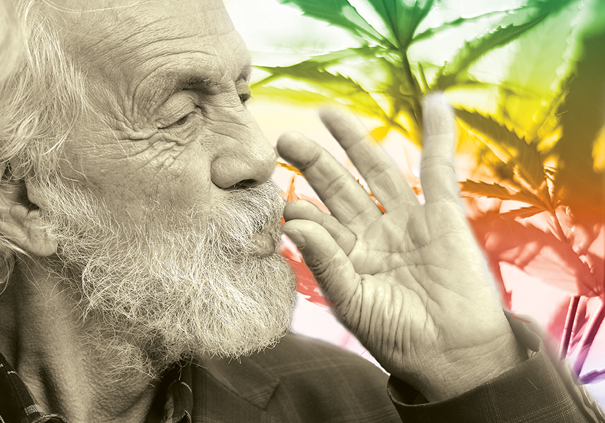 Poolside Interview with Tommy Chong - Edibles List Magazine