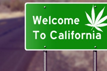 Cannabis Is Legal In California: What You Need to Know