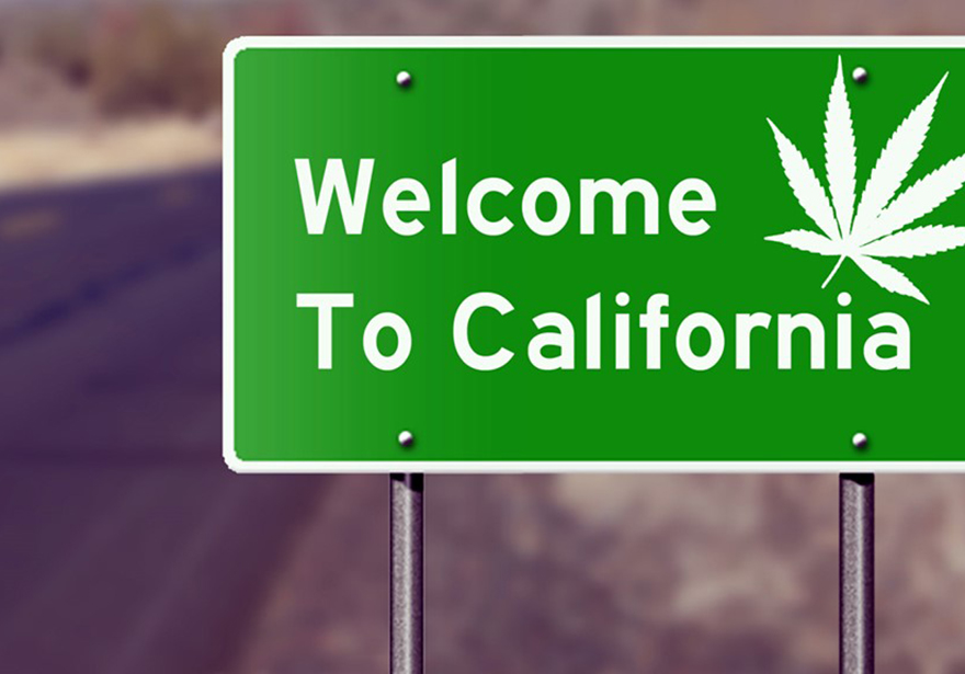 Cannabis Is Legal In California What You Need to Know