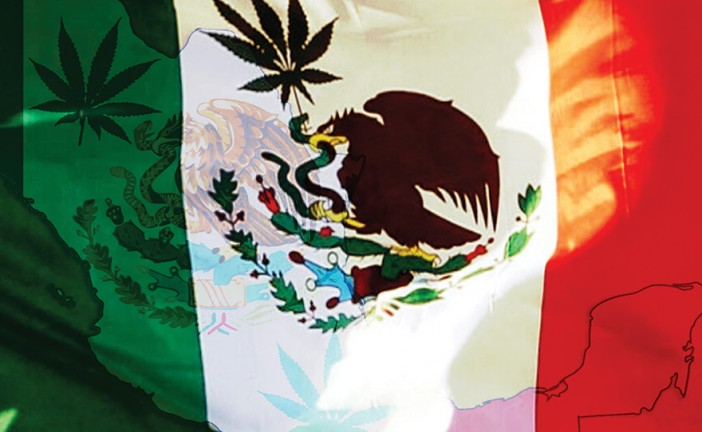 Viva Mexico! Medical Marijuana is Now Legal!