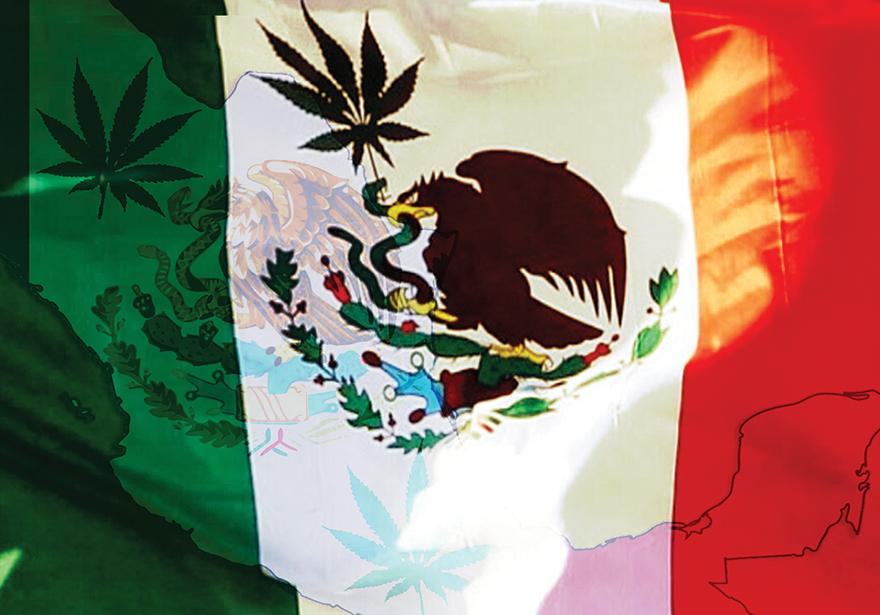 Viva Mexico! Medical Marijuana is Now Legal!