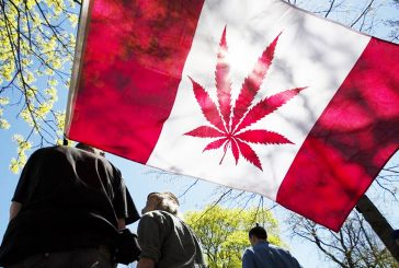 Canada Now Offers Commercial Cannabis College Certificates, Graduates for 2019