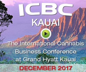Maui Cannabis Conference in January  Maui No Kai Oi Maui Is The Best