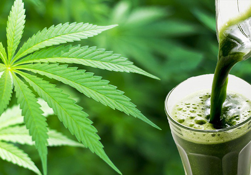 Q&A with Dr. Mike: Juicing Cannabis