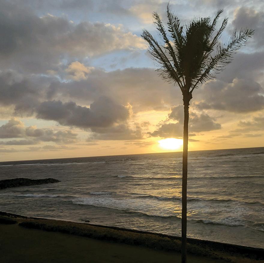 KauaiCann Expo & Conference Recap