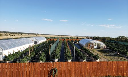 A Model for Organic, Sustainable, Clean, Large Scale Farming: Pharm Aide Pharms in CA. CO. & now OK.