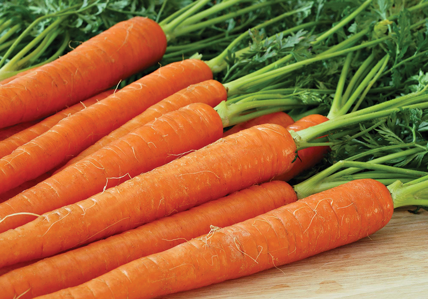 Carrots Edibles Magazine Recipe