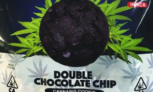 Edibles List Review Mystery Baking Double Chocolate Chip Cookie