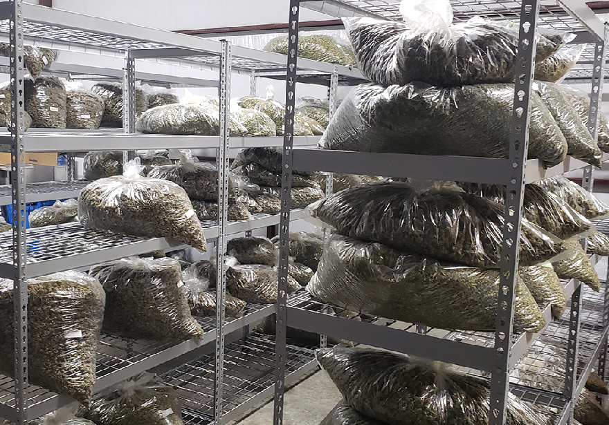 Preppers Stock Up on Weed and Food