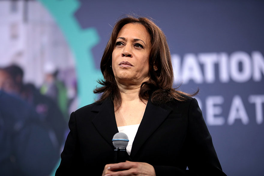Issue 64 Kamala Harris on Cannabis