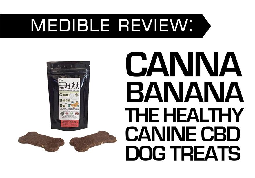 CANNA BANANA THE HEALTHY CANINE CBD DOG TREATS
