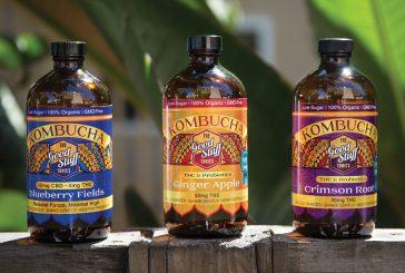 Good Stuff Tonics Ginger Apple Kombucha
