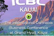 Maui Cannabis Conference in January  Maui No Kai Oi Maui Is The Best