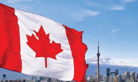 Canadian Pot Stocks
