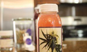 WüSah: Refresh Cold Pressed Juice