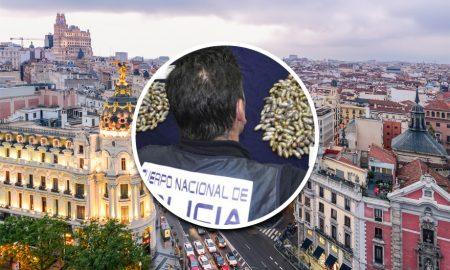 Poo Found in Madrid Spain Street Pot
